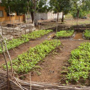 56. Apprentissage durable et développement de l'éducation de qualité parmi les enfants les plus vulnérables de Zanzibar