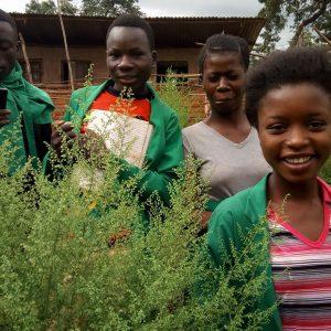 50. Relever la qualité de l'enseignement dans les écoles du camp de réfugiés de Nyarugusu (Kigoma) par l'implantation de jardins scolaires