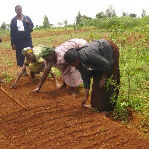 Projet Adev : promouvoir une éducation environnementale de qualité et amélioration de la santé scolaire en Guinée forestière